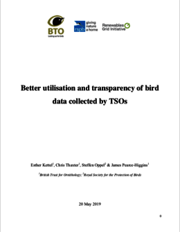 Bird Data Report